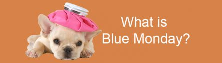 What is Blue Monday?